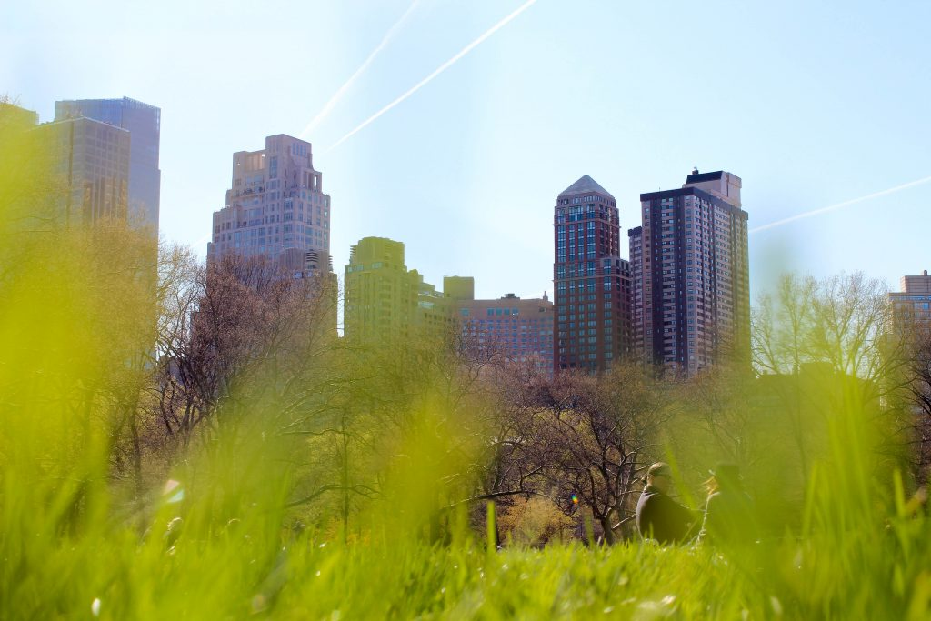 grass peeking up from the bottom of the frame, looking up at buildings next to central park in New York City, on of the best spring break destinations in the US