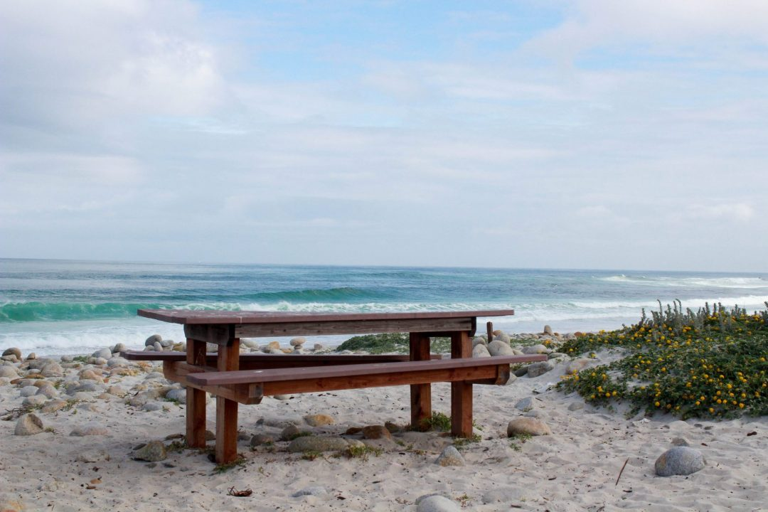 17 mile drive at pebble beach picnic table