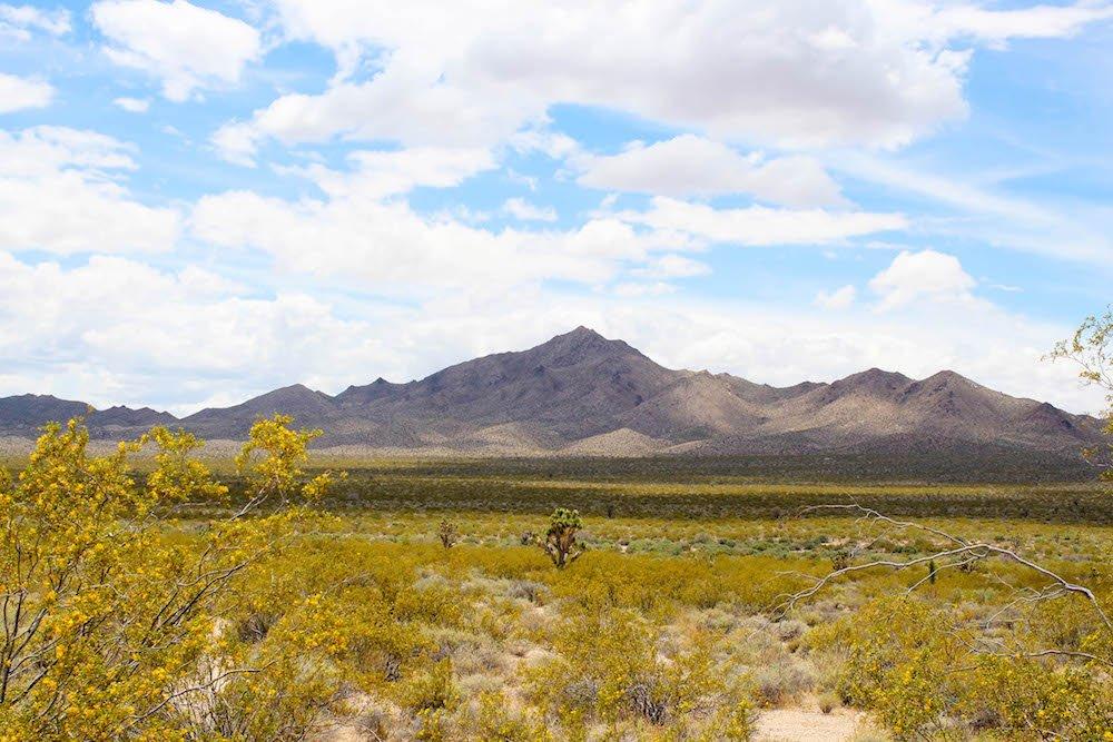 Mountain Mojave Desert National Preserve California USA