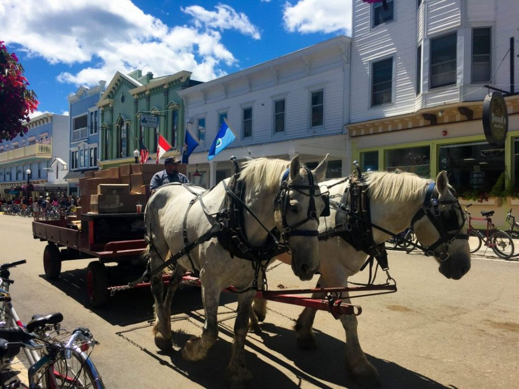 two horses pulling a buggy delivering packages on mackinac island, one of the best spring break destinations in the us
