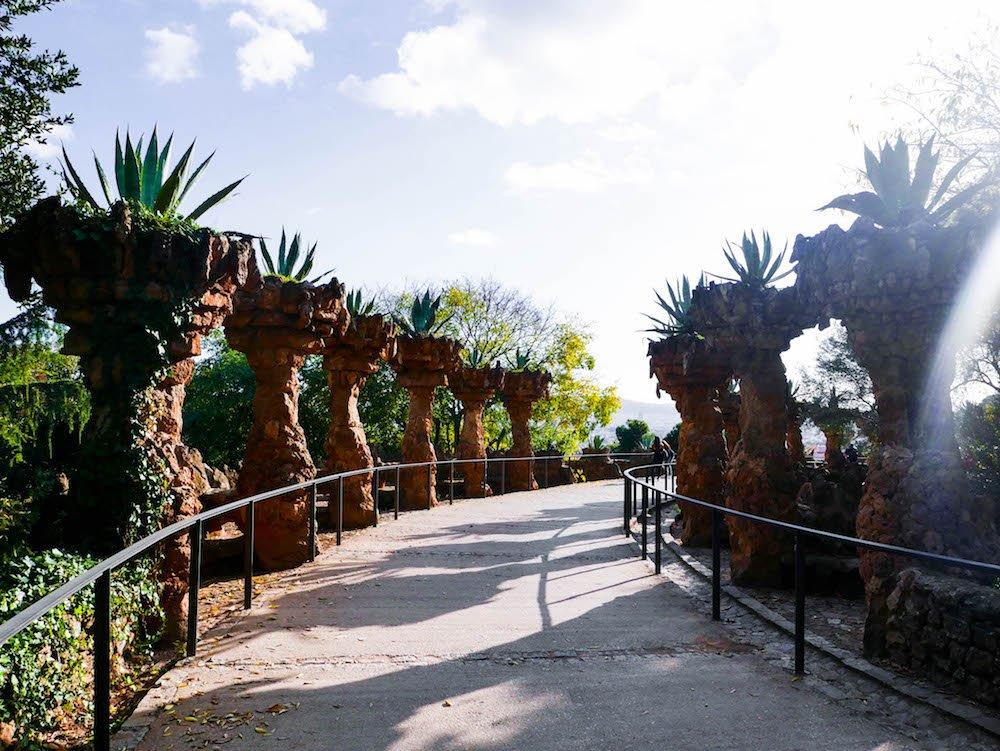 Succulents Park Guell Barcelona Spain