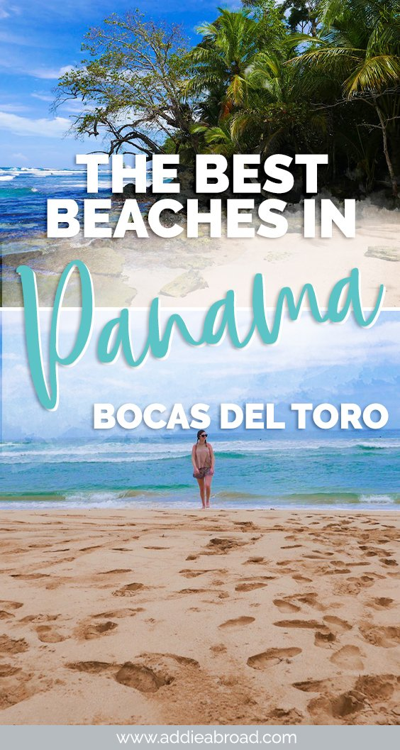 2 of the best beaches in Panama are just a short, stunning hike apart. Learn all about how to hike from Wizard Beach to Red Frog Beach on Isla Bastimentos. One of the best things to do in Bocas del Toro, Panama!