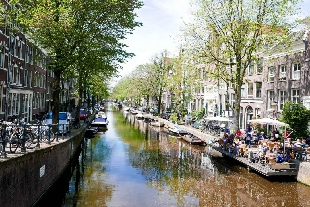 Amsterdam Trees Canal