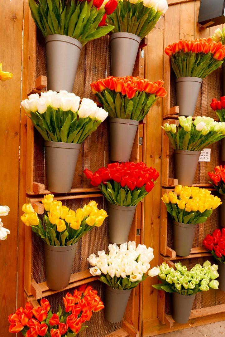 Amsterdam Tulip Market Fake Tulips