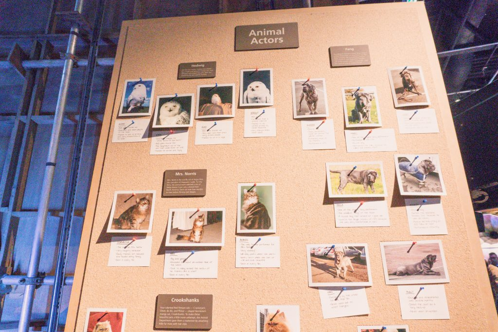 Information board about the animal actors at Warner Bros Harry Potter Studio Tour London