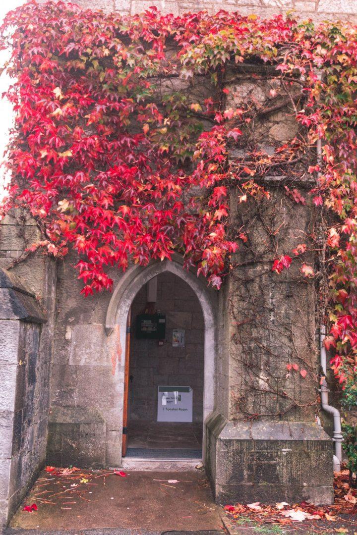 Ivy Door at the University College Cork City Ireland