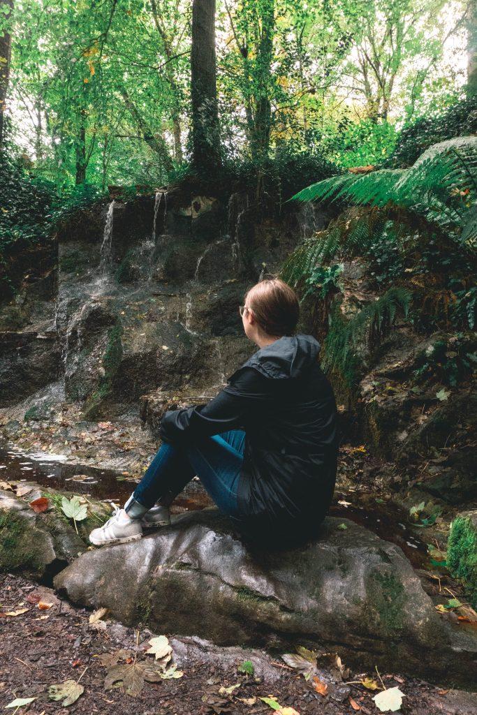 Addie Fern Garden Blarney Castle Ireland