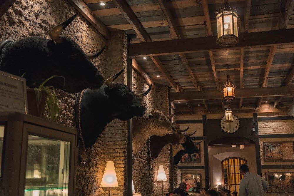 Bulls heads on the wall in Bar El Baratillo in Seville, Spain