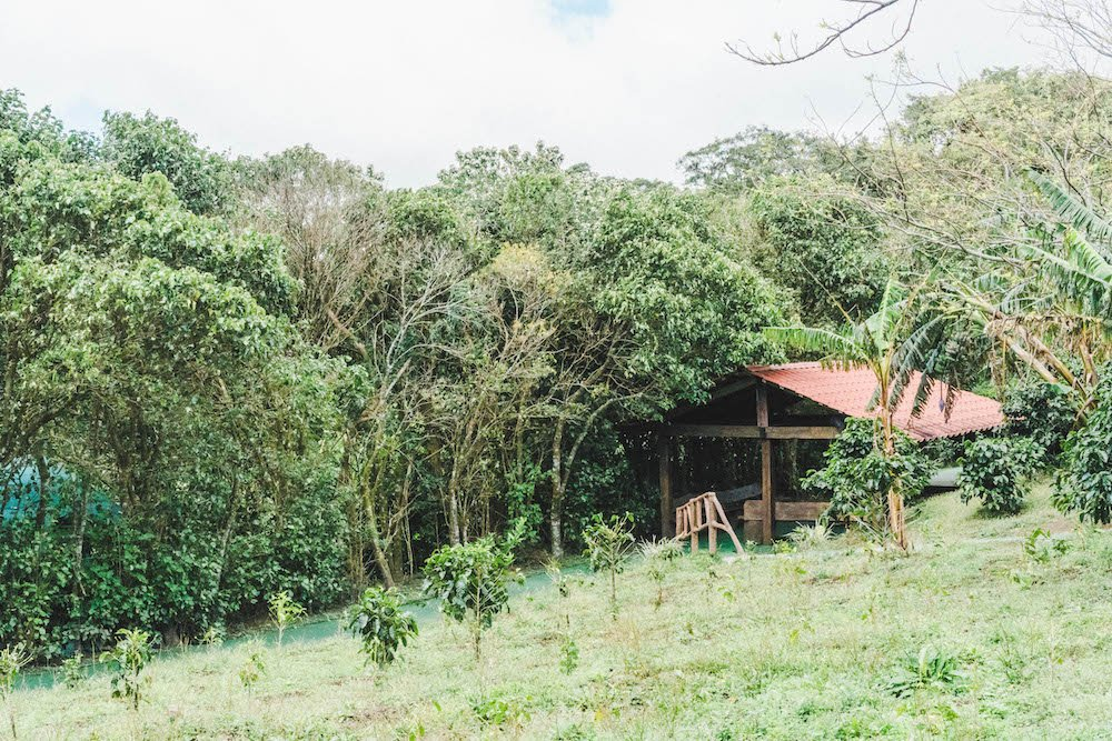 Small hut on a coffee farm in Monteverde, Costa Rica