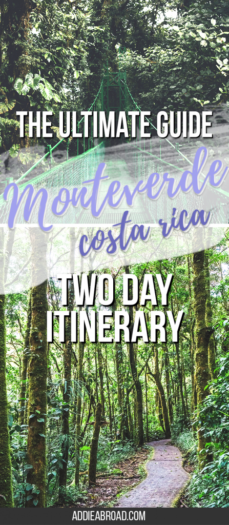 Are you visiting Costa Rica? You need to go to Monteverde! Here's how to spend a great two days in Monteverde, Costa Rica, including what to do, where to stay, and what to pack for Monteverde.