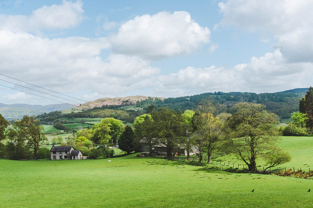 one of the many fields on the walk from Hawkshead to Tarn Hows on our romantic Lake District break