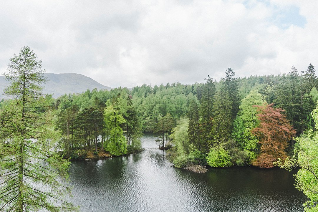 The lake at Tarn Hows in the Lake District, England