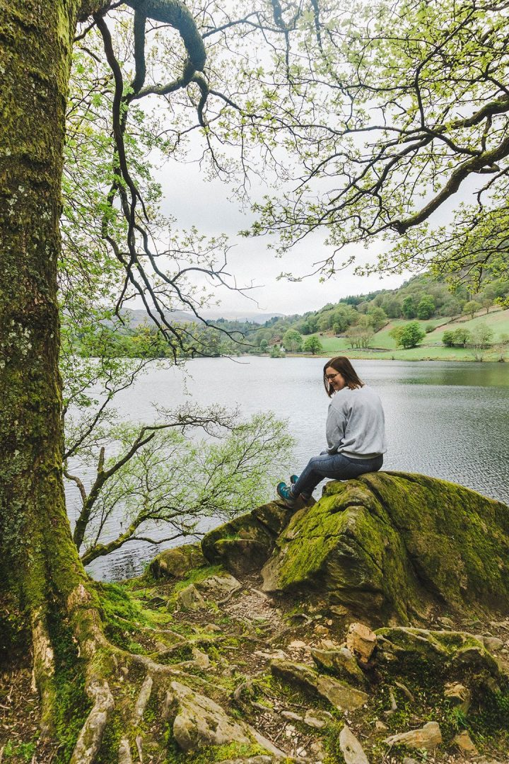 Addie looking over her shoulder on a rock at Rydal Water in the Lake District, England