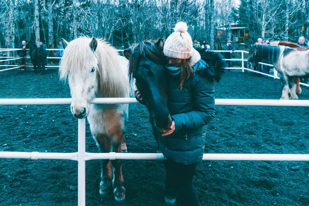 Addie standing next to two Icelandic horses, hugging one of them