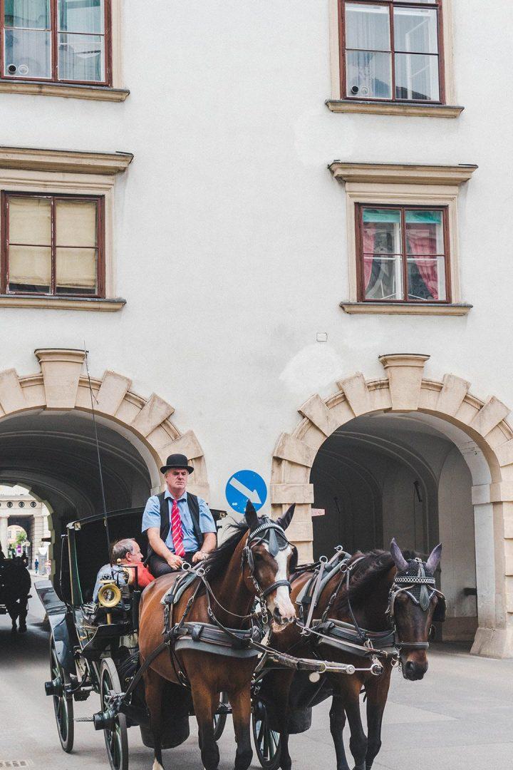 A horse drawn carriage in Vienna, Austria