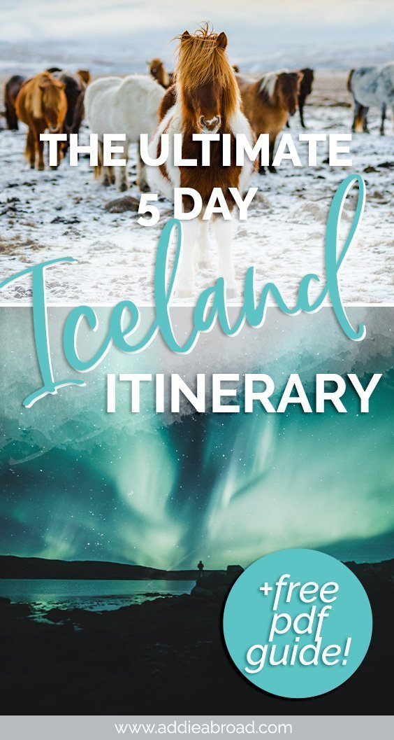 This 5 day Iceland Itinerary takes you through the best things to do in Iceland. Swim in the Blue Lagoon, drive the Golden Circle, day trip to the black sand beaches of the South Coast, and more. Click through to start planning your trip!