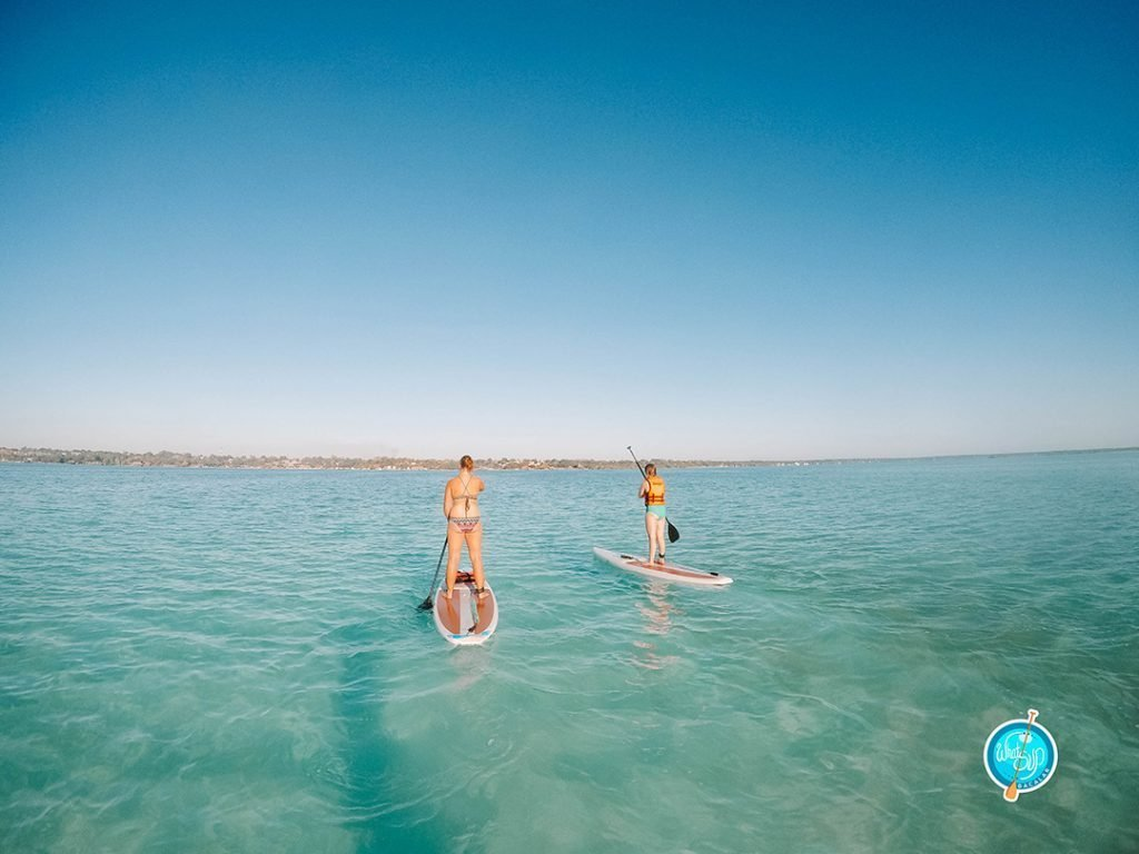Stand up paddleboarding on the Bacalar lagoon
