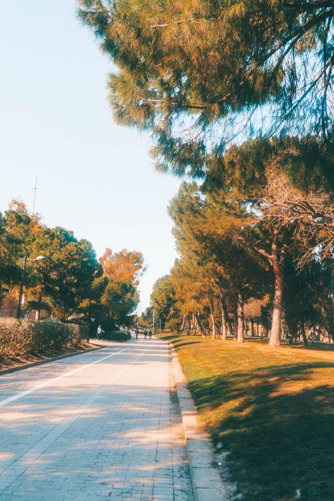 A path in a park in Valencia