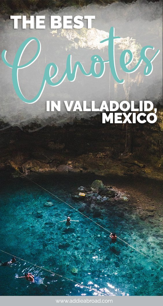 The best Cenotes in Valladolid, Mexico