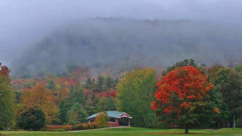 Fall trees and fogs in the White Mountains, New Hampshire