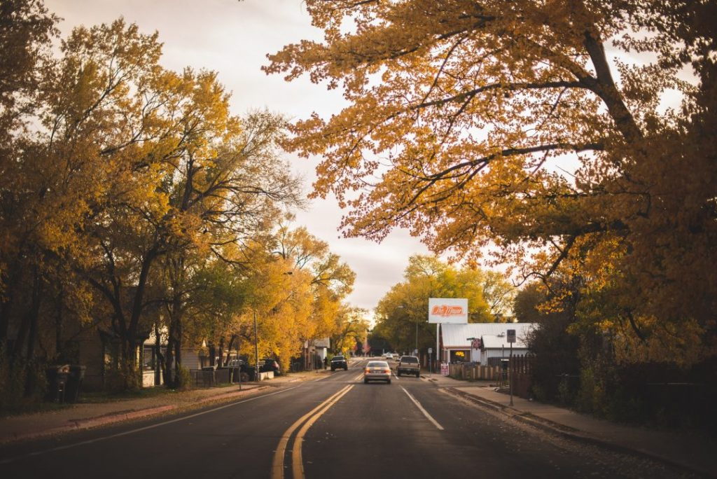 A road through autumn trees Flagstaff, Arizona