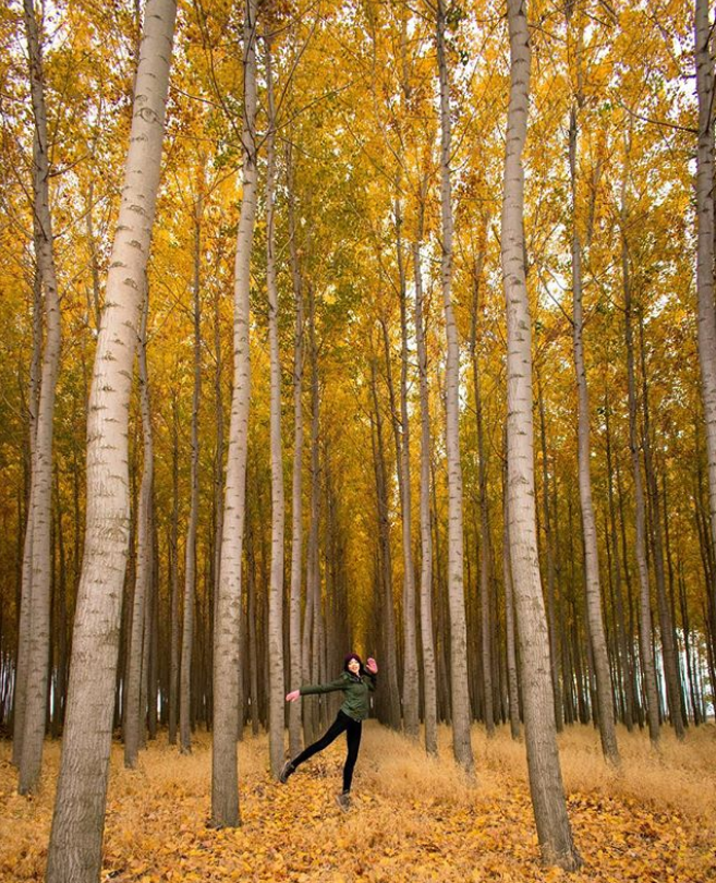 A girl dancing in a tree farm in Oregon