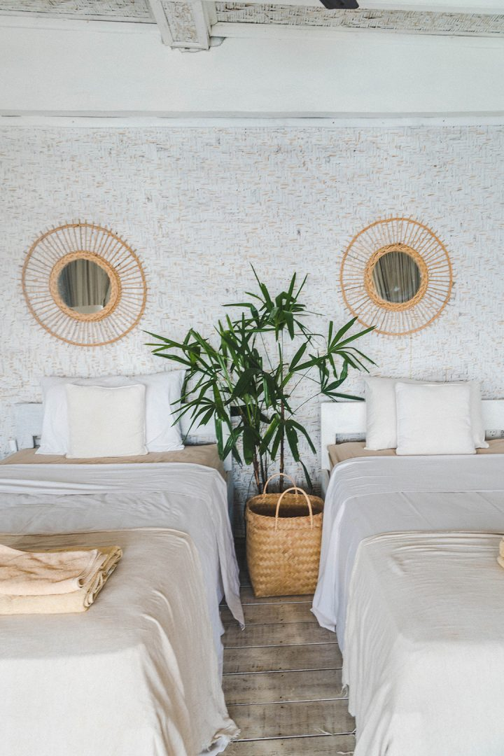 two twin beds against a white wall with a plant in between