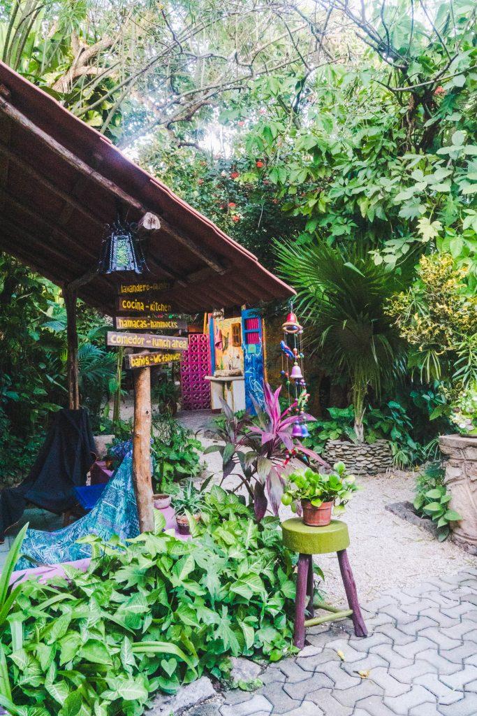 the garden in hostel la candelaria in valladolid, mexico
