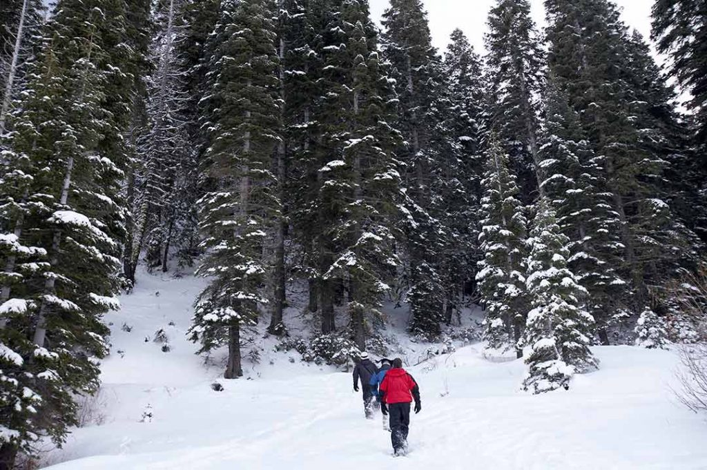 snoeshoeing in Lake Tahoe - beautiful destinations to visit in winter in USA