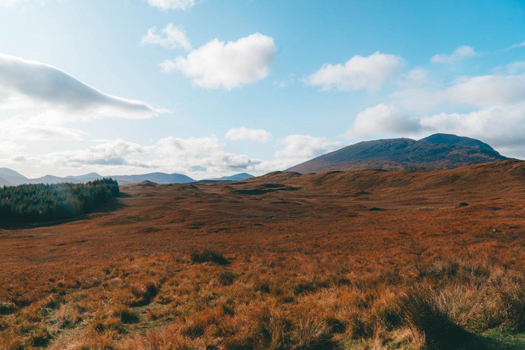 brown orange rolling hills