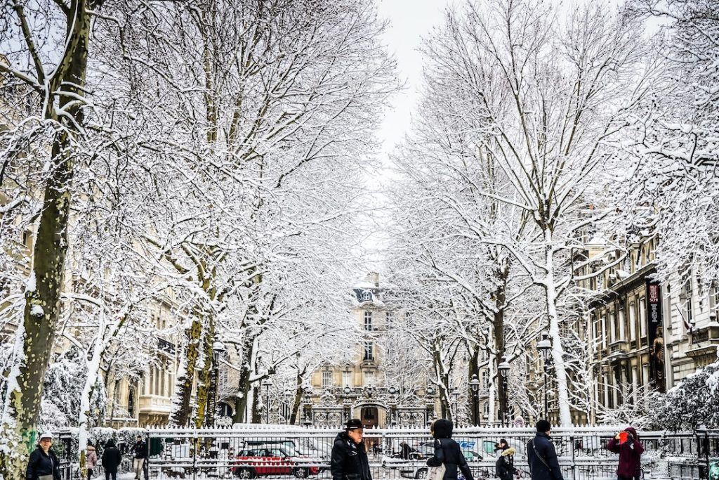 snow covered trees in Paris, France in europe in winter