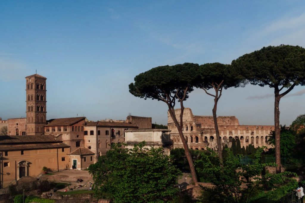 looking out at the colosseum from the palatine hill with cypress tress in the foreground