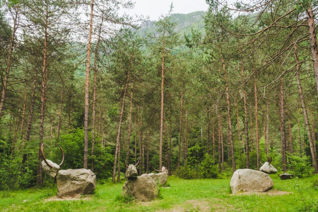 A group of cow statues made out of rocks, arranged in a circle in the woods in Valle di Ledro, Italy