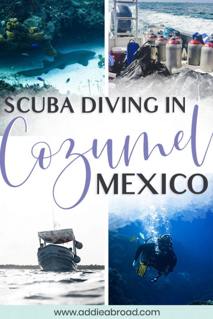Are you planning on taking a trip to Cozumel Mexico? Whether you're there for days on the beach or only a day on a cruise, you can't miss the amazing Cozumel scuba diving. It's by far the best out of all the things to do in Cozumel! Click through to read the COMPLETE guide to scuba diving in Cozumel, Mexico! #scubadive #mexico #travel