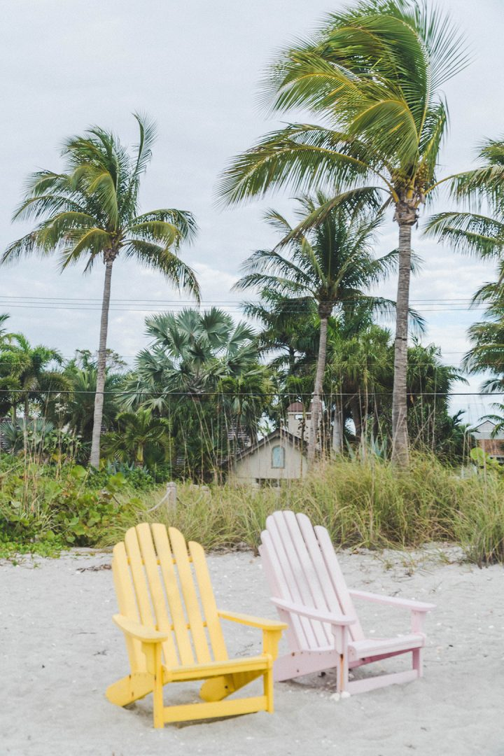 two colorful beach chairs on the beach with palm trees in the background