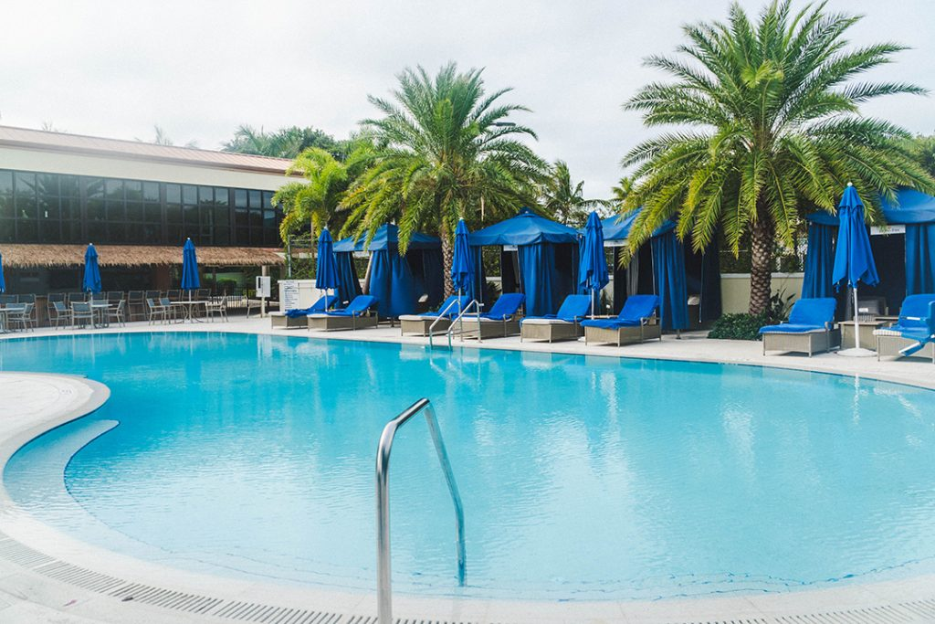 a pool with bright blue water, blue lounge chairs, and palm trees