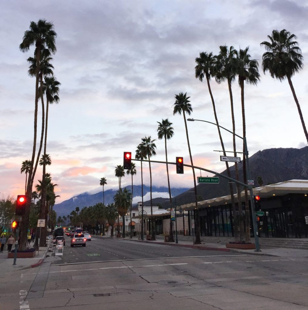 palm trees lining a street in palm springs