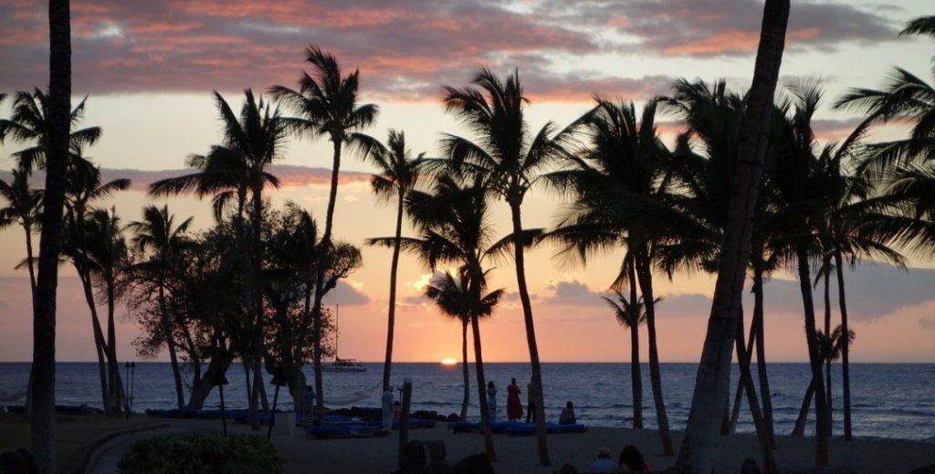 palm trees at sunset in Kona, Hawaii